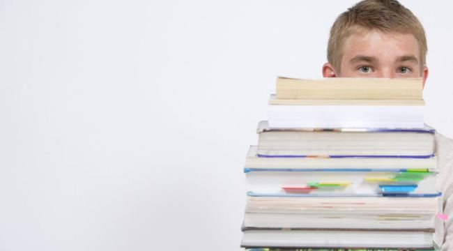 Carousel_copyright_stockfreeimages_student_huiswerk_stapel_boeken_leren_lezen